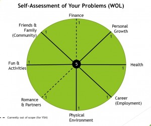 YSH Wheel of Life